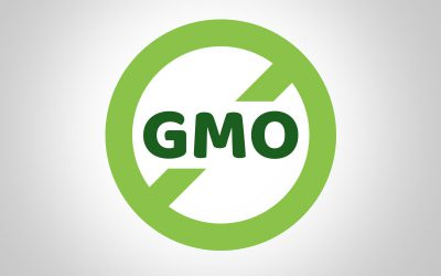 Should we say No to GMO?